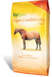 This highly-innovative muesli blend is 25% more conditioning than traditional conditioning mixes and cubes.